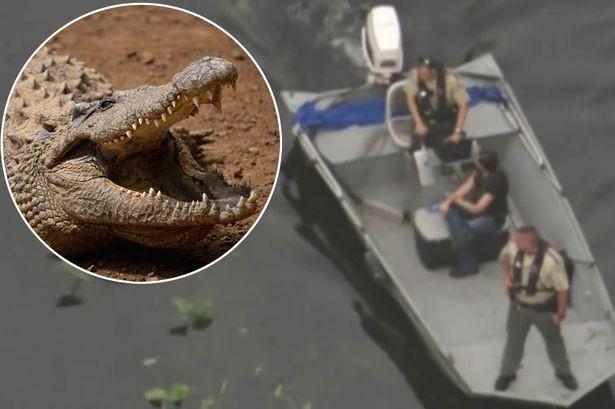 Bị cá sấu xé nát tay khi đang bơi - ảnh 1