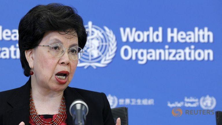 Giám đốc WHO: Sẽ không còn dịch Ebola từ cuối năm 2015 - ảnh 1