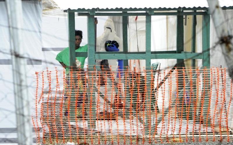Giám đốc WHO: Sẽ không còn dịch Ebola từ cuối năm 2015 - ảnh 2
