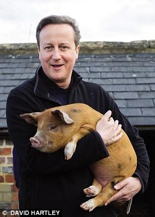 Bác bỏ thông tin Thủ tướng Anh từng đưa 'của quý' vào thủ lợn - ảnh 1