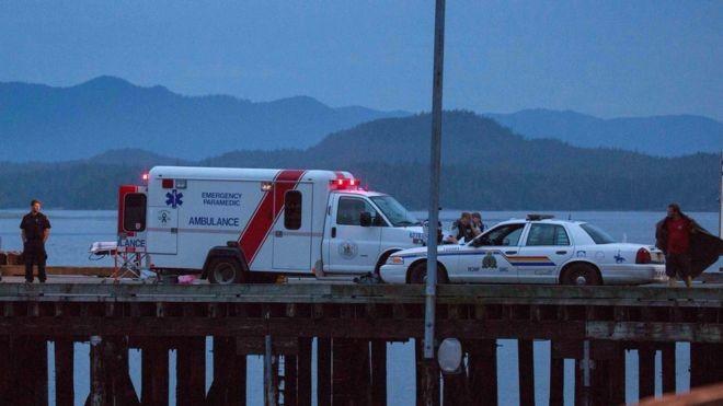 Thảm kịch chìm tàu ngắm cá voi khiến 5 người chết - ảnh 1