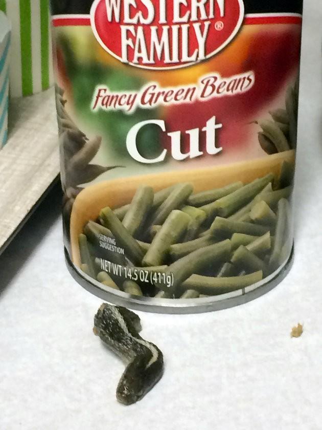 Kinh hoàng: Phát hiện đầu rắn trong hộp đậu que đóng hộp - ảnh 1