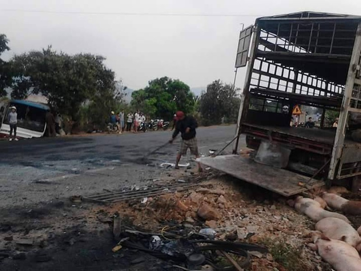 Chùm ảnh: Gần 100 chú heo nằm chết la liệt sau vụ tai nạn  - ảnh 8