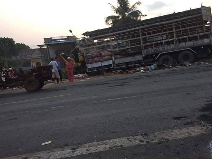 Chùm ảnh: Gần 100 chú heo nằm chết la liệt sau vụ tai nạn  - ảnh 7