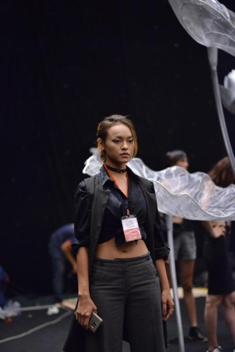 Người mẫu Ngô Quỳnh Mai bị cấm diễn khắp Việt Nam - ảnh 2