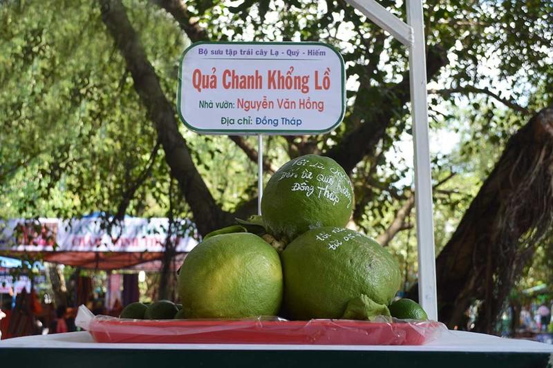 'Lễ hội Trái cây Nam Bộ 2016': Phong phú, đa dạng đủ loại trái cây - ảnh 2