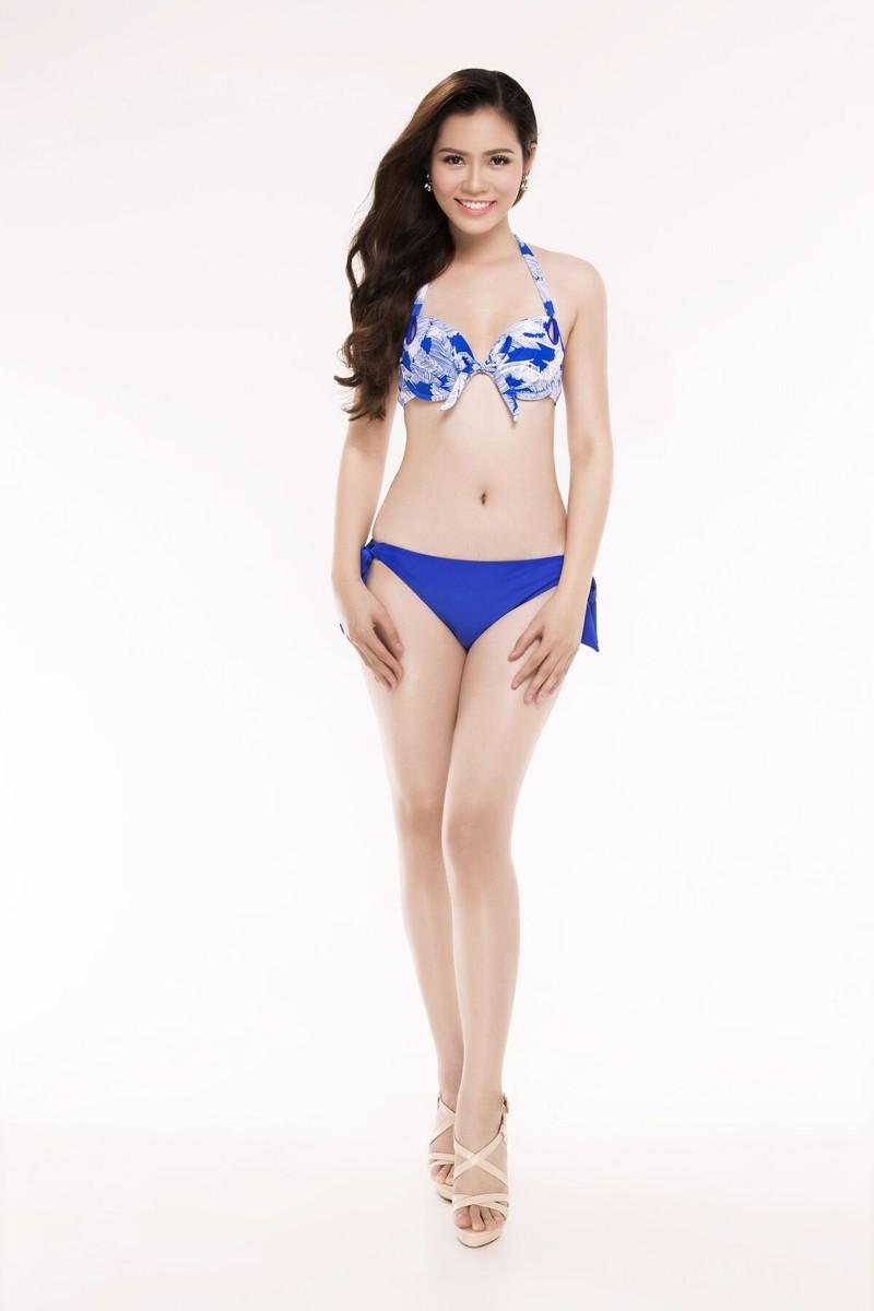 Ngắm thí sinh 'Hoa hậu Việt Nam 2016' qua trang phục bikini - ảnh 30