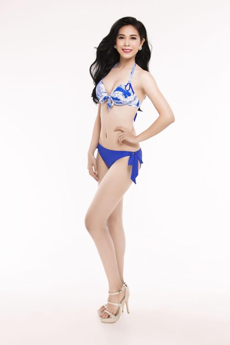 Ngắm thí sinh 'Hoa hậu Việt Nam 2016' qua trang phục bikini - ảnh 3