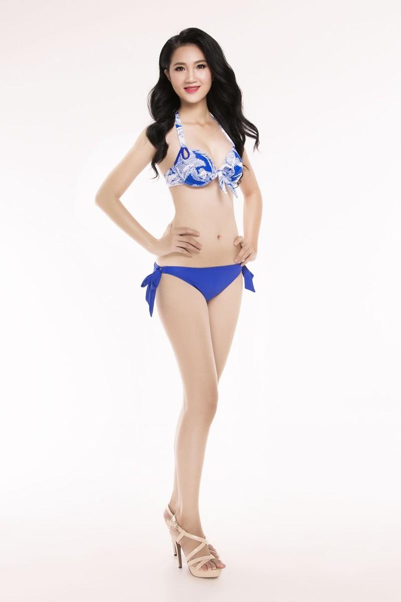 Ngắm thí sinh 'Hoa hậu Việt Nam 2016' qua trang phục bikini - ảnh 20