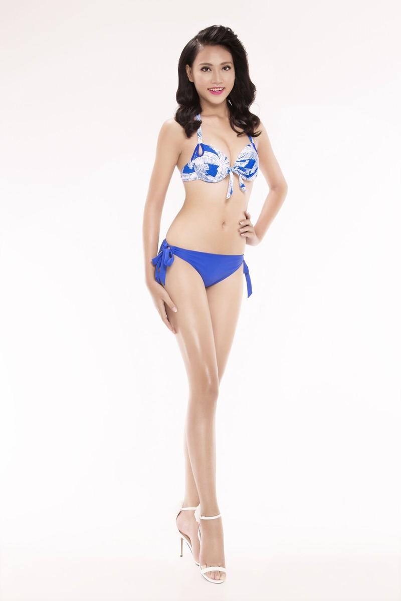 Ngắm thí sinh 'Hoa hậu Việt Nam 2016' qua trang phục bikini - ảnh 24