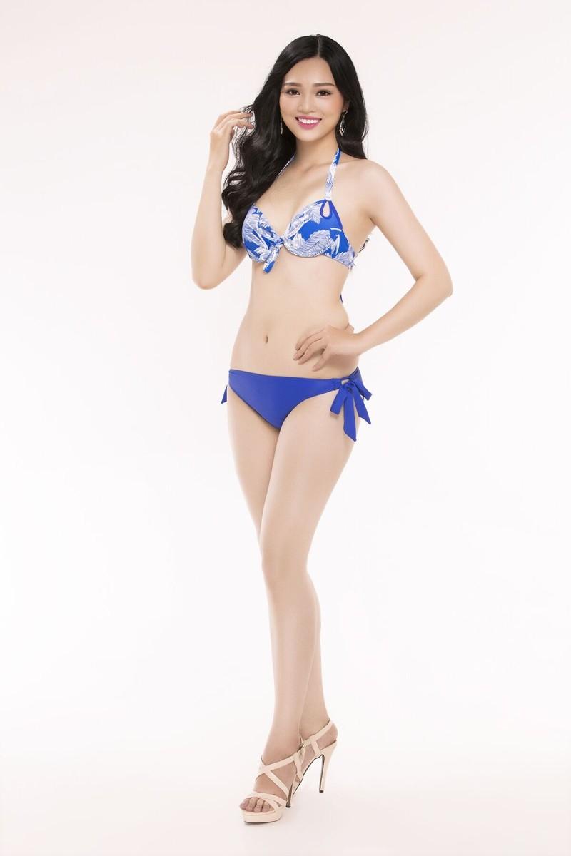 Ngắm thí sinh 'Hoa hậu Việt Nam 2016' qua trang phục bikini - ảnh 25
