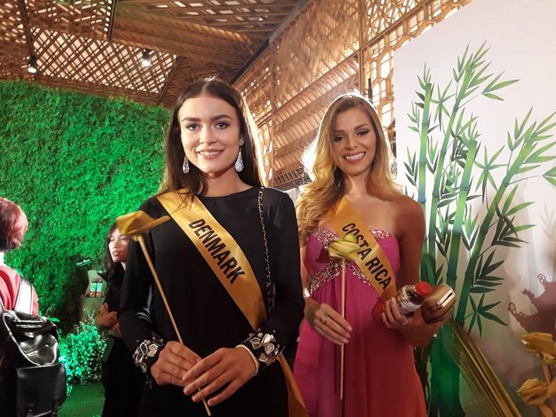 Mãn nhãn với 80 hoa hậu thế giới khoe sắc tại TP.HCM - ảnh 1