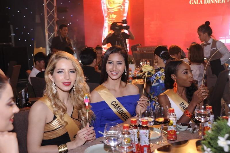 Mãn nhãn với 80 hoa hậu thế giới khoe sắc tại TP.HCM - ảnh 12