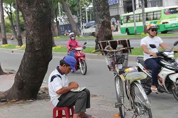 Ngắm hàng cây cổ thụ Sài Gòn trước giờ bị đốn hạ  - ảnh 9