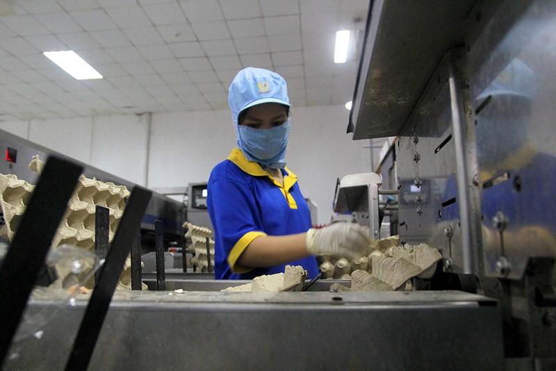 Mặt trận Tổ quốc đi giám sát an toàn thực phẩm  - ảnh 7