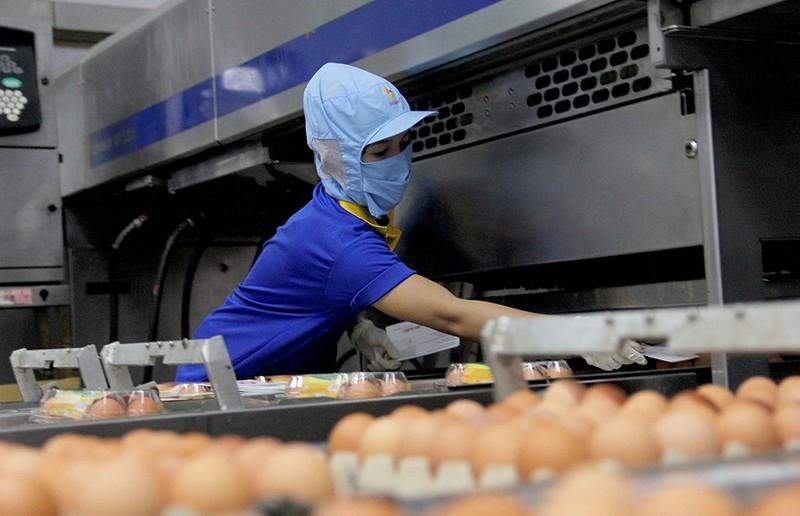 Mặt trận Tổ quốc đi giám sát an toàn thực phẩm  - ảnh 8