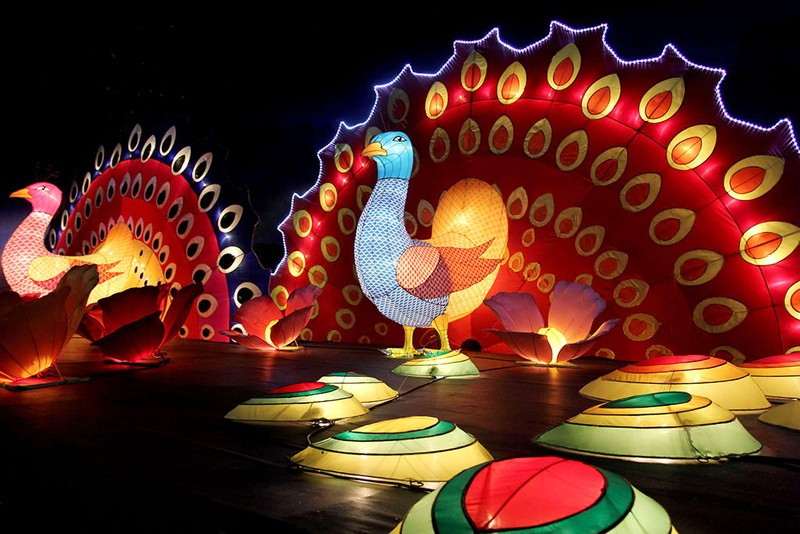 TP.HCM: Gần 20 con vật khổng lồ xuất hiện trong đêm Trung thu - ảnh 5