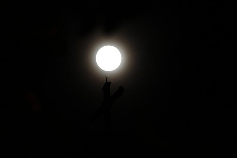 """Ngắm """"siêu trăng"""" sau 69 năm xuất hiện ở TP.HCM - ảnh 11"""