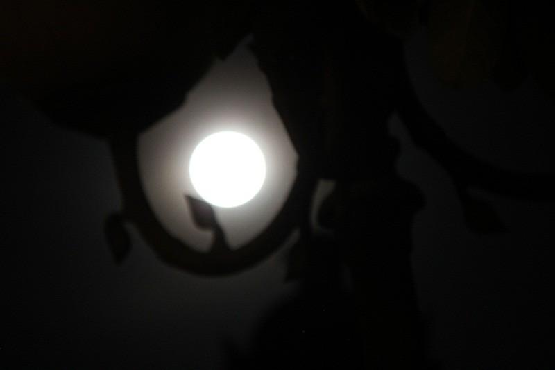 """Ngắm """"siêu trăng"""" sau 69 năm xuất hiện ở TP.HCM - ảnh 3"""