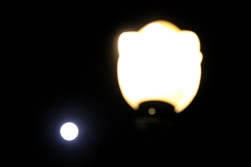 """Ngắm """"siêu trăng"""" sau 69 năm xuất hiện ở TP.HCM - ảnh 12"""