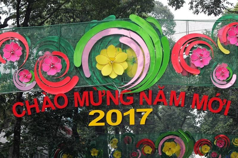 Rối mắt đoạn đường trang trí tết 2017 ở TP.HCM - ảnh 3