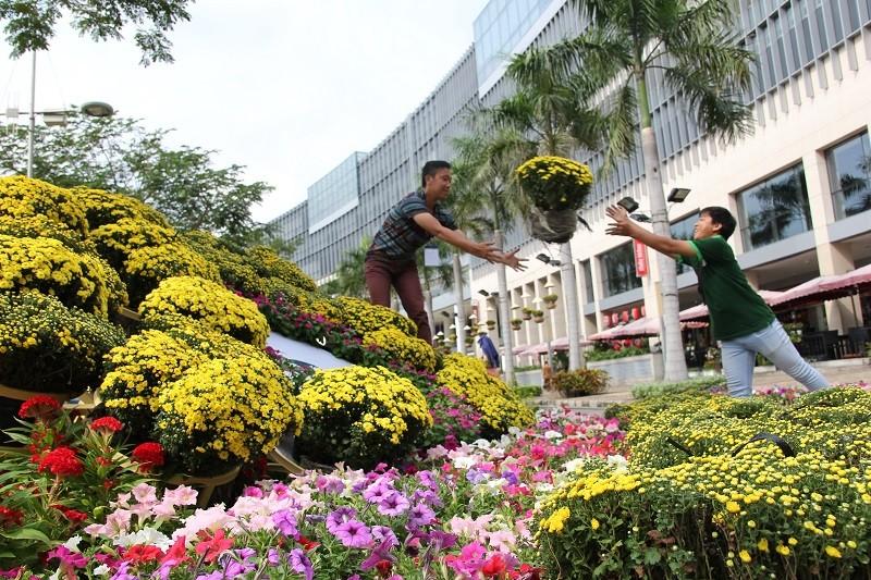 Lạ mắt vườn hoa đồng nội ở 'khu nhà giàu' - ảnh 18