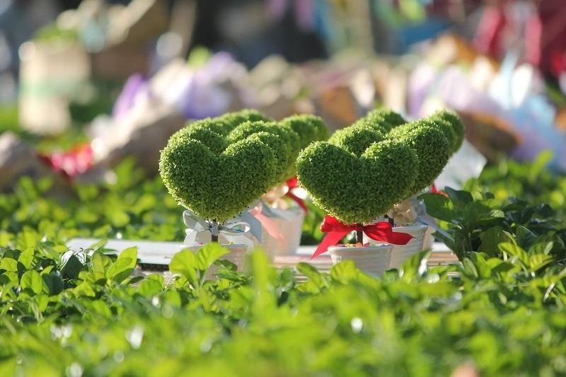 """""""Con đường tình yêu"""" rực rỡ quà và hoa Valentine - ảnh 12"""