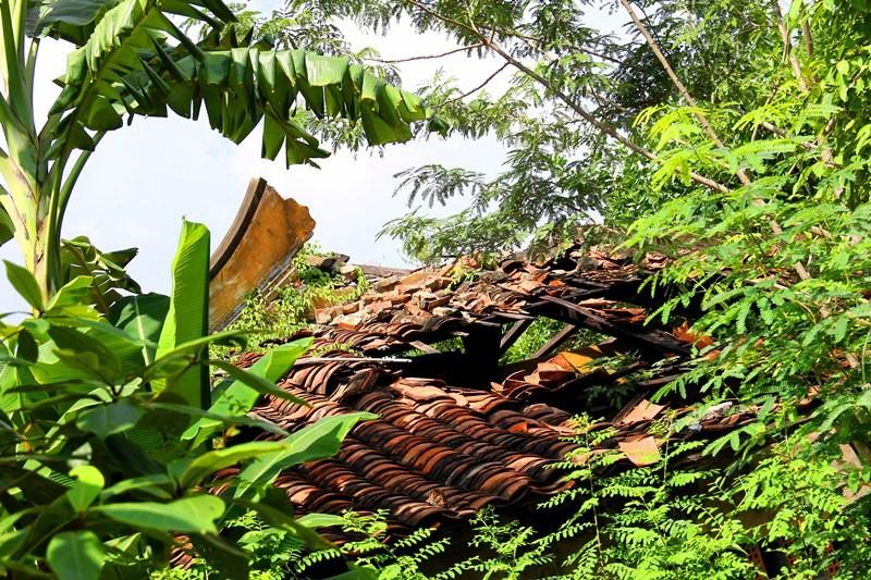 Sắp trùng tu chùa Giác Viên gần 300 tuổi - ảnh 3