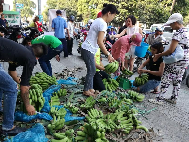 Sau Đồng Nai, người Sài Gòn ra tay cứu chuối Tây Ninh - ảnh 2