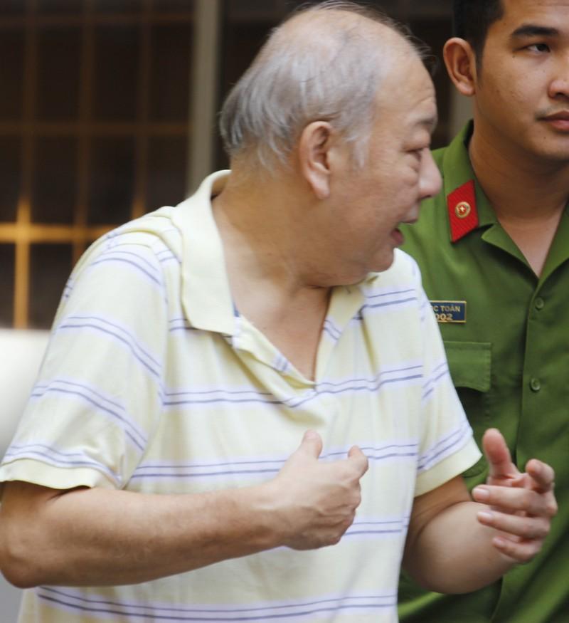 Việt kiều Pháp phạm tội trộm cắp hầu tòa sau 15 năm lẩn trốn - ảnh 1