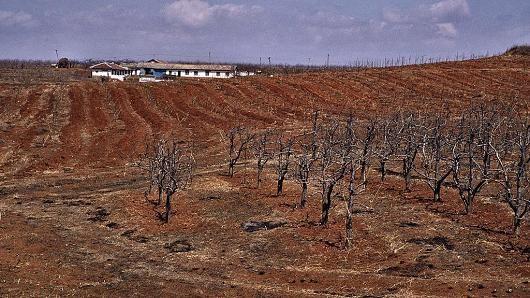 Triều Tiên mất mùa nặng vì hạn hán - ảnh 1