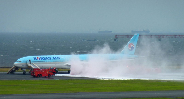 Máy bay chở 319 người bắt lửa ngay trước khi cất cánh - ảnh 5