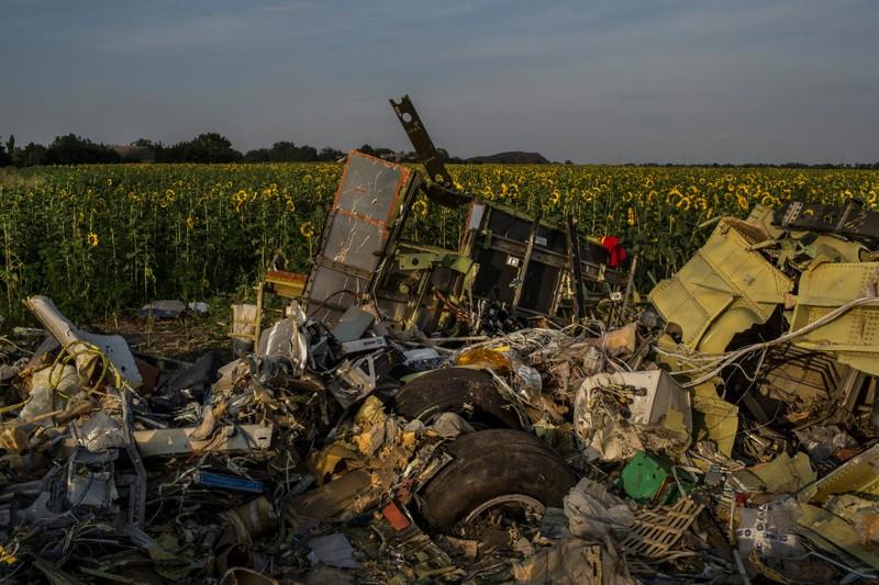 Hiện trường xác chiếc máy bay MH17 rơi trên một cánh đồng hoa ở Petropavlovka (Ukraine) tháng 7-2014.