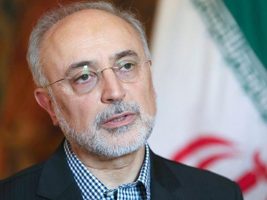 Phó Tổng thống và Giám đốc Tổ chức Năng lượng Nguyên tử Iran Akbar Salehi tại Bỉ ngày 14-9.