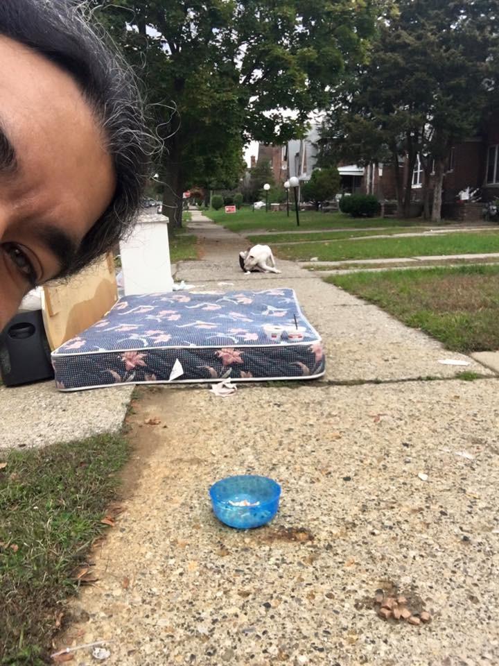 Anh Oliver và chú chó Boo gần tấm nệm.