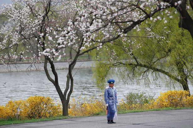 Giữa căng thẳng, Bình Nhưỡng đón mưa trong bình lặng - ảnh 6