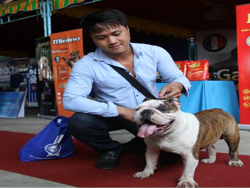 Lần đầu tiên miền Tây tổ chức thi nhan sắc cho chó - ảnh 2