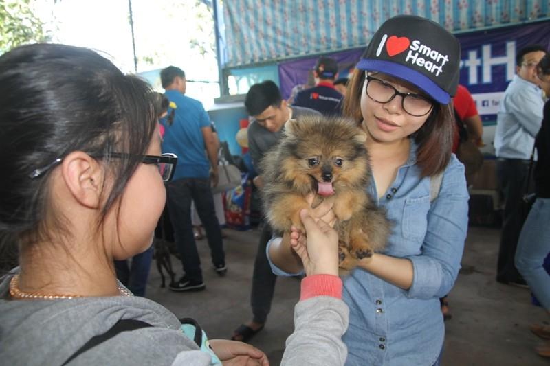 Lần đầu tiên miền Tây tổ chức thi nhan sắc cho chó - ảnh 9