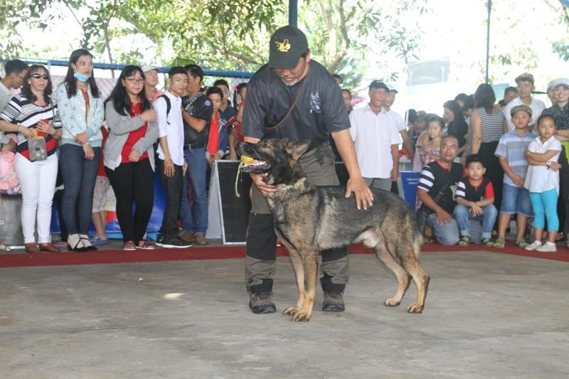 Lần đầu tiên miền Tây tổ chức thi nhan sắc cho chó - ảnh 6