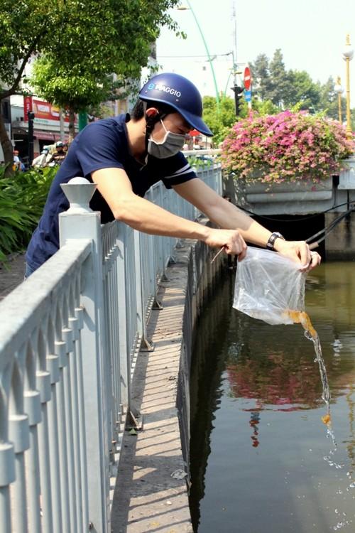Cá chép vừa thả xuống kênh đã có người canh để bắt lại - ảnh 5