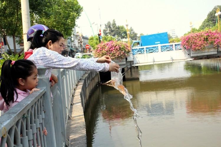 Cá chép vừa thả xuống kênh đã có người canh để bắt lại - ảnh 4