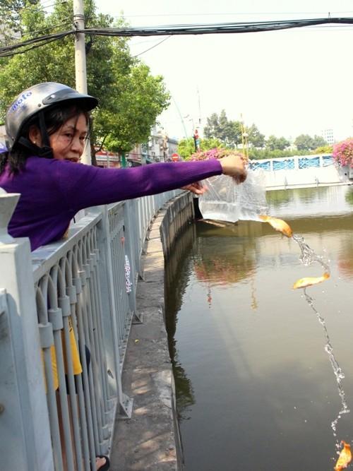 Cá chép vừa thả xuống kênh đã có người canh để bắt lại - ảnh 3