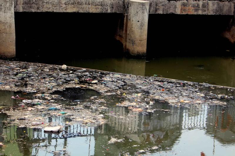 Sáng còn ngoi ngóp, chiều cá đã chết trắng xóa kênh Nhiêu Lộc  - ảnh 2