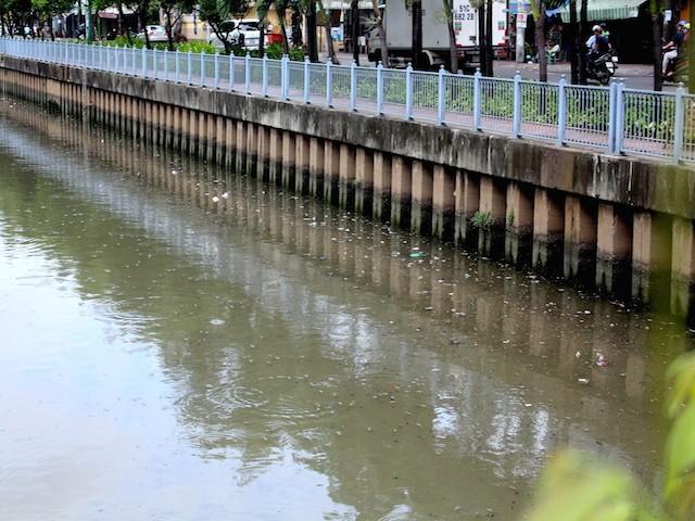 Cá nổi lên hàng loạt trên kênh Nhiêu Lộc - Thị Nghè - Ảnh: Hồng Trâm