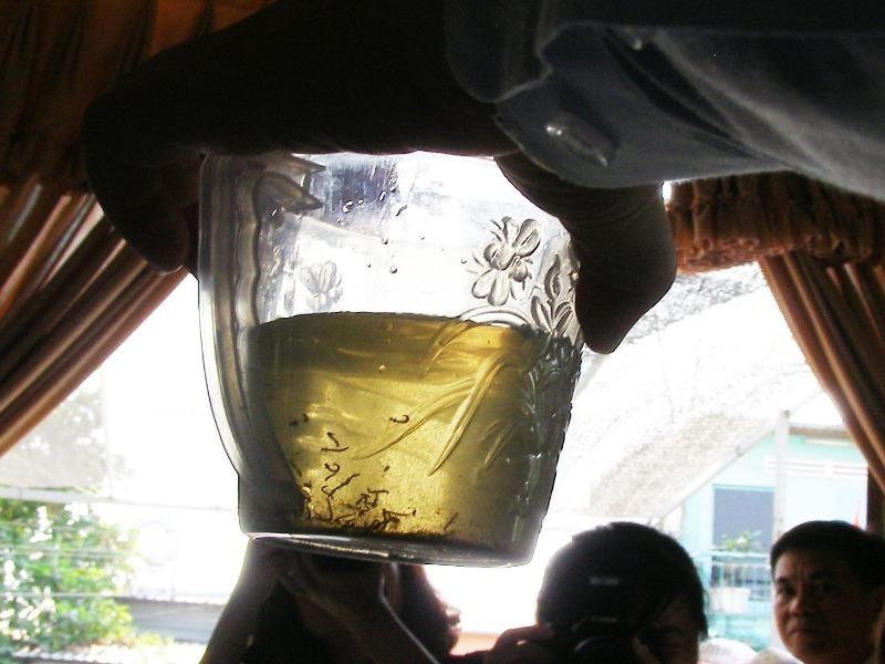Đoàn kiểm tra Bộ Y tế phát hiện nhiều lăng quăng trong lọ hoa tại một hộ dân ở huyện Bình Chánh (TP.HCM). Ảnh: TRẦN NGỌC