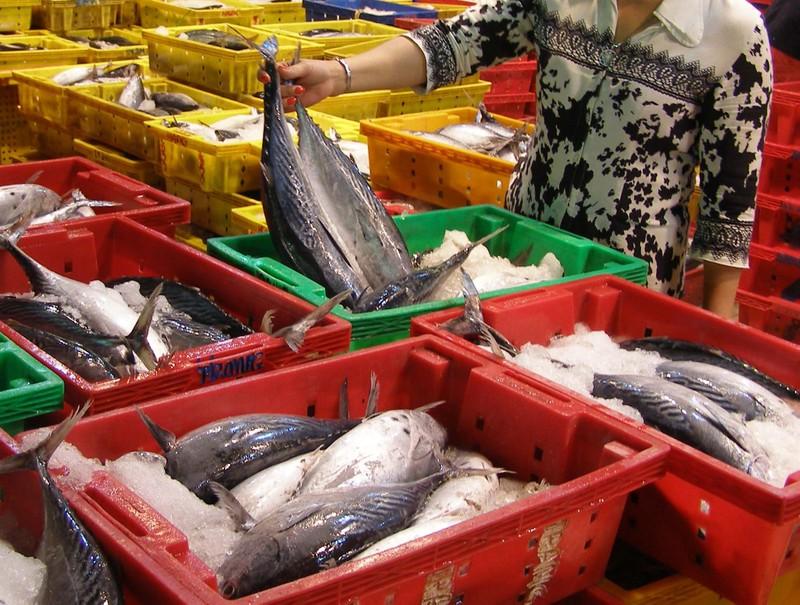 Đỏ mặt, nhức đầu do ăn cá dính độc chất - ảnh 1
