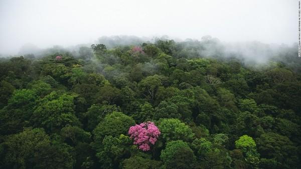 Muôn vàn nét đẹp huyền ảo của Trái Đất nhìn từ trên cao - ảnh 20