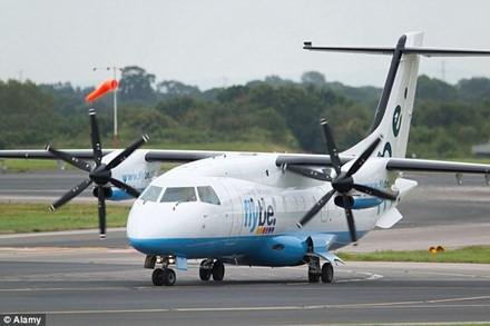 Máy bay hạ cánh khẩn cấp vì con ong kẹt trong động cơ - ảnh 1