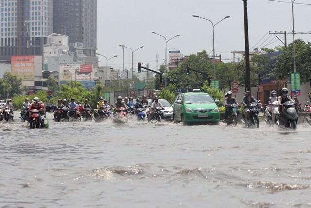 Cần hơn ngàn tỉ mua xe chống ngập ở TP.HCM - ảnh 1