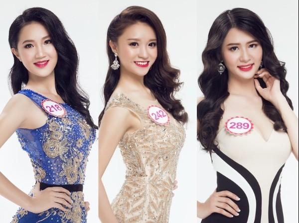 Thêm 3 thí sinh xin rút khỏi cuộc thi Hoa hậu Việt Nam - ảnh 1